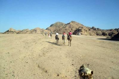 Super Safari in Sharm